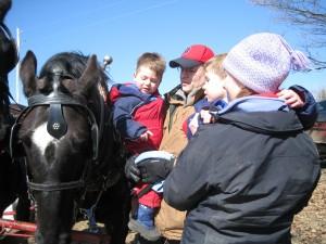 Horse buggie ride in Vermont